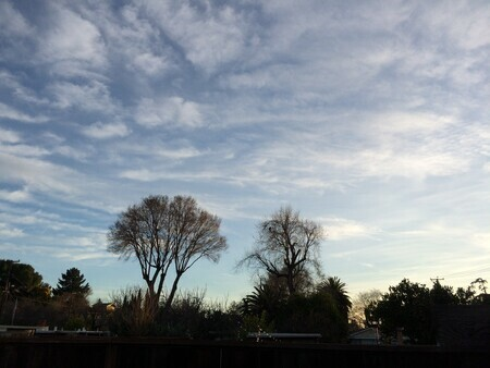 Late afternoon skyline, Concord California, Feb 2020